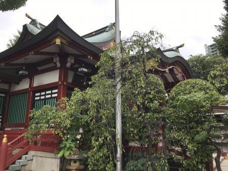 20200919居木神社13