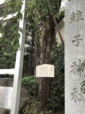 20200919雉子神社06