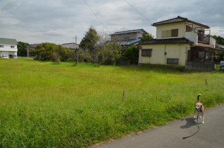 20200920飯野陣屋09