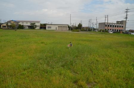 20200920飯野小学校跡14