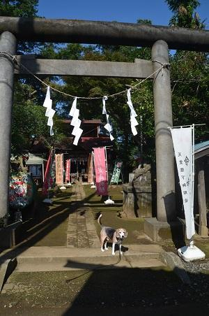 20201002冨里香取神社02