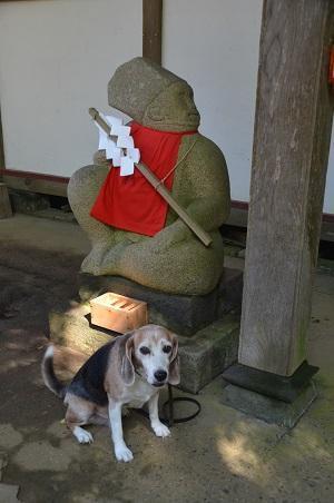 20201002東金日吉神社17