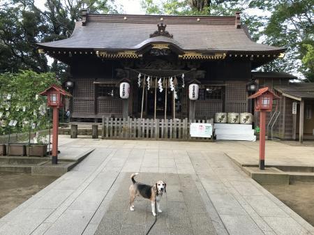 20201002麻賀多神社07