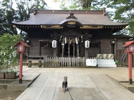 20201002麻賀多神社13