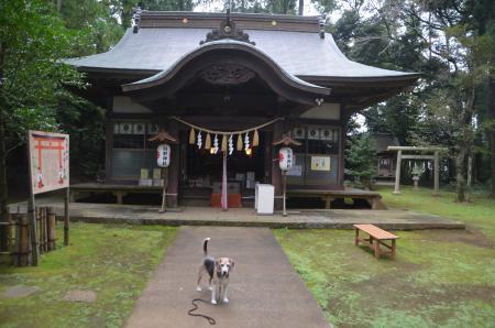 20201005成田熊野神社05