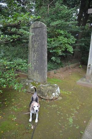 20201005成田熊野神社02