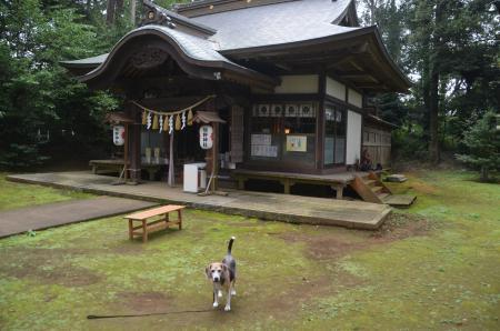 20201005成田熊野神社09