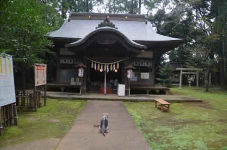 20201005成田熊野神社17
