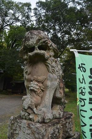 20201011金村別雷神社05