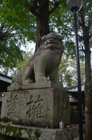 20201011金村別雷神社13