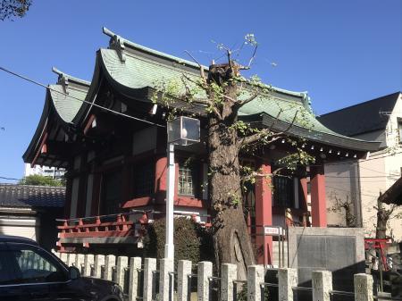 20201029中原八幡神社12