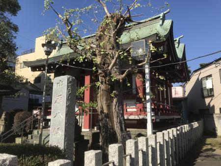 20201029中原八幡神社11