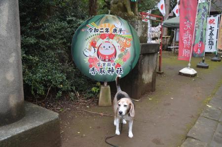 20201103冨里香取神社02