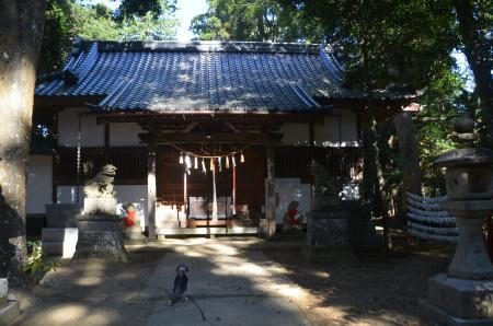 20201104東金日吉神社16