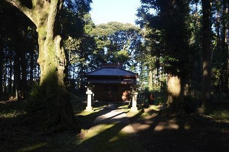 20201104六所神社10
