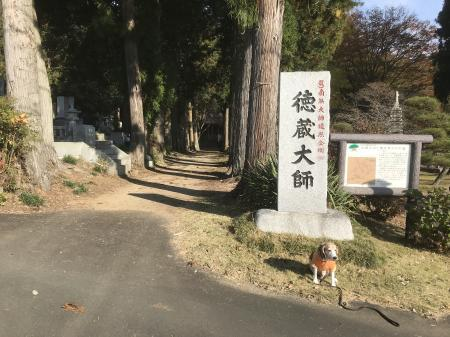 20201116徳蔵寺02