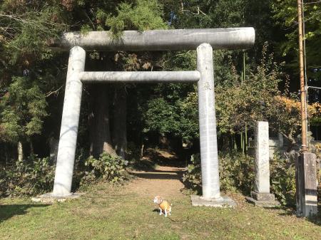 20201116青山神社02