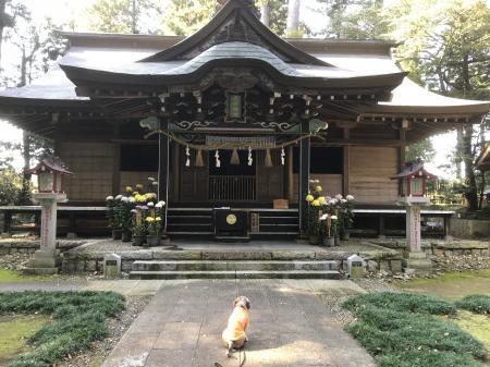 20201116大井神社16