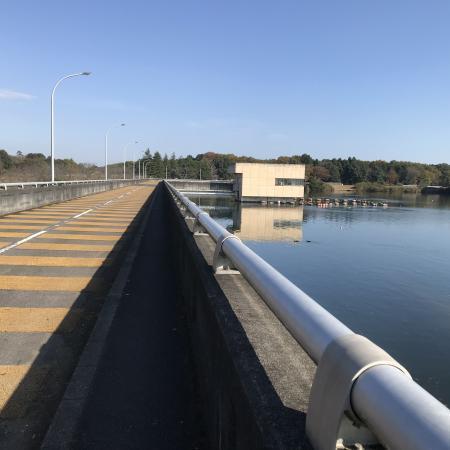 20201116椿川ダム09