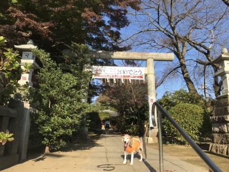 20201116水戸八幡宮02