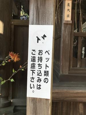 20201116水戸八幡宮14