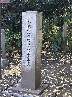 20201116水戸八幡宮41