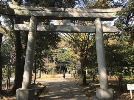 20201118赤坂氷川神社05