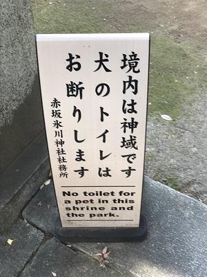 20201118赤坂氷川神社04