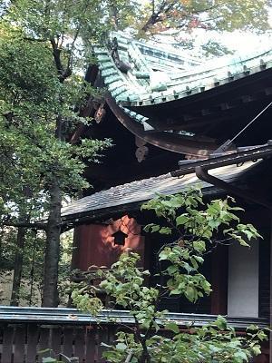 20201118赤坂氷川神社16