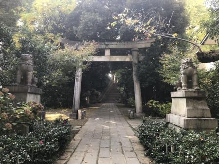 20201118赤坂氷川神社21