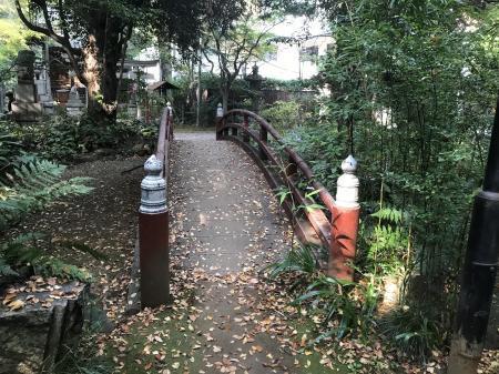 20201118赤坂氷川神社42