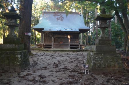20201122一之宮神社08