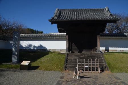 20201123水戸城06