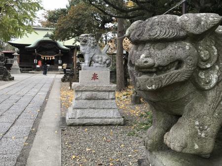20201127菊田神社05