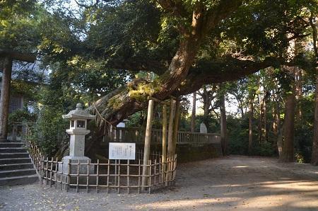 20201128莫越山神社23