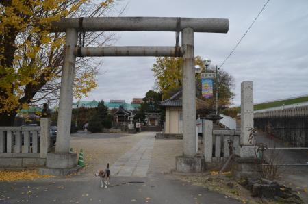202011298久喜八坂神社02