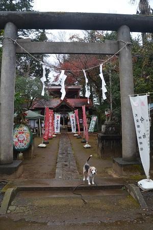 20201202冨里香取神社01