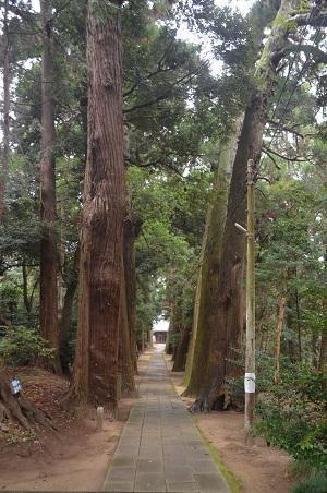 20201202東金日吉神社09