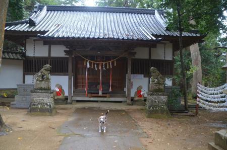 20201202東金日吉神社14