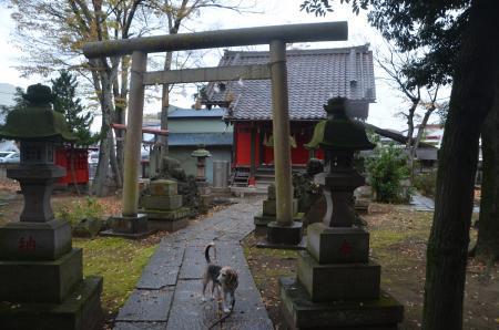 20201202今井神社05