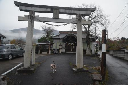 20201205加波山神社八郷拝殿02