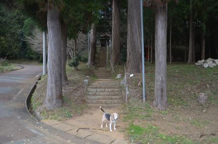 20201208家之子八幡神社01