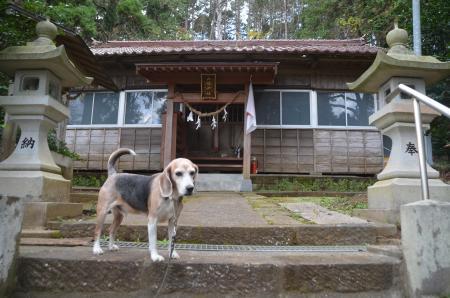 20201208家之子八幡神社09