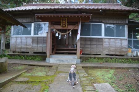 20201208家之子八幡神社14