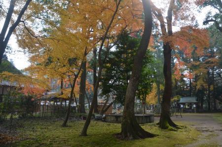 20201212小御門神社11