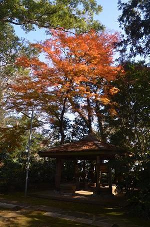 20201212神崎神社28