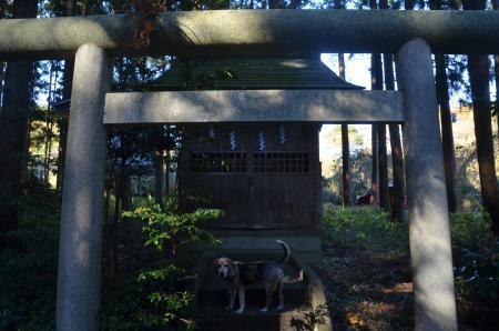 20201123開江吉田神社09