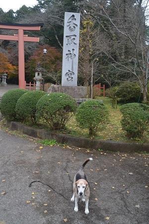 20201212香取神宮01