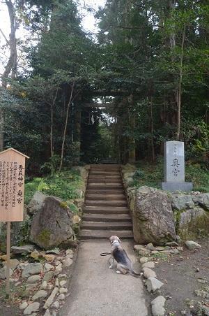 20201212香取神宮29