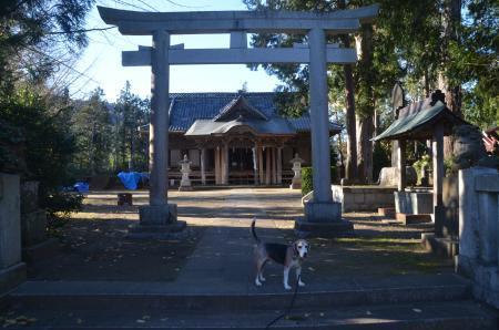 20201217諏訪神社02